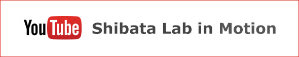 Shibata Lab in Motion